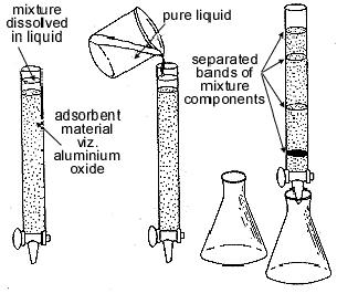 chromatography.png